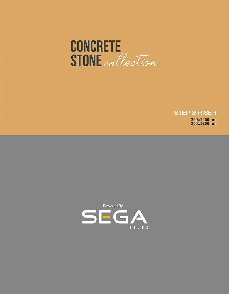 Sega Step & Riser